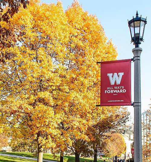 Bascom hill in fall